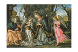 Nativity with Two Angels  Possibly Early 1490s (Panel)