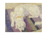 Sleeping Dog  1909