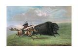 Print after Buffalo Hunt by George Catlin  C1920