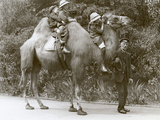 A Bactrian Camel Ride with Keeper and Three Children at London Zoo  May 1914