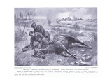 Private Parnaby Awarded Dcm for Extracting a Comrade from Beneath a Fallen Horse under Heavy Fire O