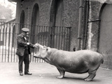 A Photograph of Ernie Bowman and Bobbie at London Zoo  1923