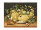 Still Life with a Bowl of Citrons  C1640