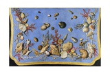 Preparatory Painting for Floor Console Decorated with Shells and Corals  1760