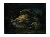 Dead Bird  1664