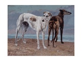 The Greyhounds of the Comte De Choiseul  1866
