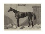 Fille De L'Air  the Winner of the Oaks for 1864