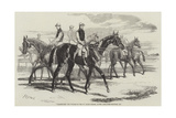 Imperieuse  the Winner of the St Leger Stakes  at the Doncaster Meeting  1857