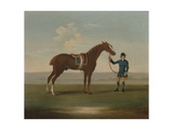 A Chestnut Horse (Possibly Old Partner) Held by a Groom