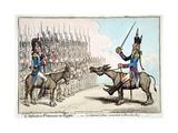 L'Infanterie Francaise En Egypte