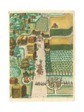 Bird's Eye View of the Village of Secoton  1590