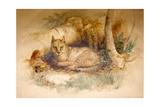 Egyptian Cat  1851-69