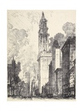 The Woolworth Building  1912