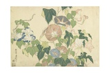 Frog and Morning Glories  C 1832
