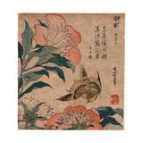 Shakuyaku Kana Ari  Peony and Canary [1833 or 1834]  1 Print : Woodcut  Color ; 192 X 174