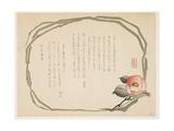 Camellia  January 1860