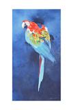 Red and Blue Macaw  2002