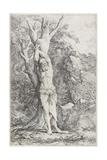 Albert  (Suffering Self-Imposed Penance)  1662-1663