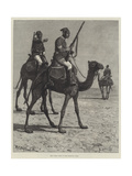 The Camel Corps of the Egyptian Army