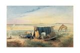Invalid's Tent  Salt Lake 75 Miles North-West of Mount Arden  1846
