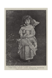The Lady Peggy  Lady Margaret Primrose
