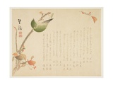 Japanese Nightingale Perched on a Branch