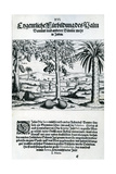 Landscape from 'India Orientalis'  1598