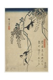 Swallows Flying Through Wisteria Vines  1837-1844