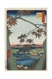 Maple Trees at Mama with View of Tekona Shrine and Bridge  January 1857