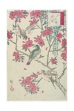 Willow  Cherry Blossoms  Sparrows and Swallow  Early 19th Century