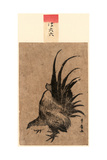 Niwatori  Chicken [Between 1804 and 1818]  1 Print : Woodcut  Color ; 172 X 114