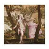 Apollo and Daphne  C1560-65