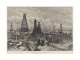 The Petroleum Oil Wells at Baku  on the Caspian