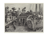 Loading a Schooner with Cocoa-Nuts at Kingston  Jamaica