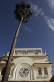 Low Angle View of Building and Palm Tree