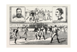 La Crosse Match  Played Last Saturday at Kennington Oval  by North of England Against South  1883
