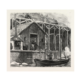 The Newfoundland Fisheries Question: British Fishing Room on the French Shore  Canada  1890