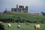Rock of Cashel or St Patrick's Rock  County Tipperary  Ireland  12th Century
