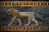 Babylon's Lion Lion Decorated the Processional Wal (Ishtar Gate) 575 BC