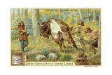 Hunting Bison in Ancient Germany