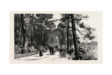 Bournemouth  the Invalids Walk in Public Gardens  1890  UK