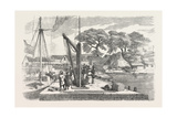 Matacong on the West Coast of Africa the Pier and Warehouses 1854