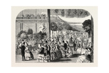 Flower Show at the Crystal Palace  London  UK  1857
