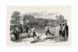 Snow-Shoe Race at the Crystal Palace 1867