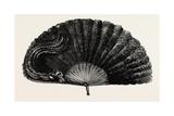 Modern Ostrich Feather Fan   1882