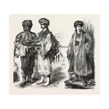 Types from Albania  Kurdistan  and Armenia  1882