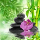 Spa Background - Black Stones and Bamboo on Water Papier Photo par Natalia Merzlyakova