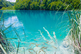 Plitvice Lakes National Park  the Largest National Park in Croatia  UNESCO World Heritage