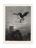 Catching an Owl  1873