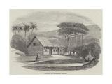 Church  at Pitcairn's Island